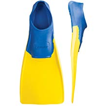Best Swimming Fins